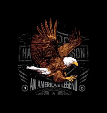 Свитшот с принтом American Legend