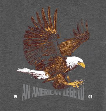 Футболка с принтом American Legend
